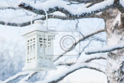 Lantern hanging in tree at winter