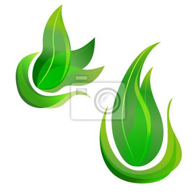 leaf concepts