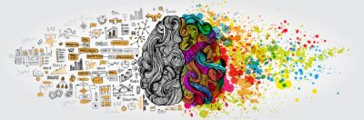 Wall mural Left right human brain concept. Creative part and logic part with social and business doodle