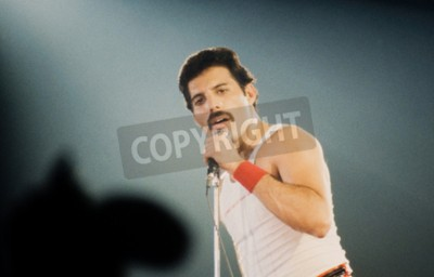 Wall mural LEIDEN, THE NETHERLANDS - NOV 27, 1980: Freddy Mercury singer of the british band Queen during a concert in the Groenoordhallen in Leiden in the Netherlands