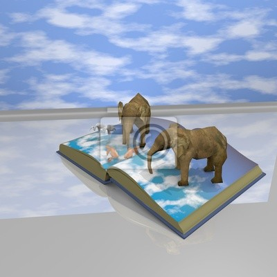 libro degli animali vicino ad una finestra