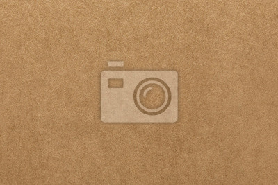 Wall mural Light brown kraft paper texture for background
