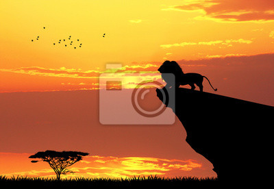Wall mural Lion on rope