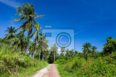 Lush tropic meadow and road with palm trees and clear blue sky