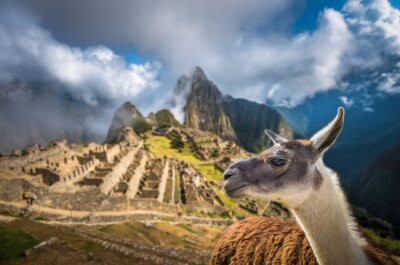 Wall mural Machu Picchu, UNESCO World Heritage Site. One of the New Seven W