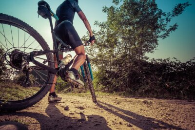 Wall mural Man riding on a dirty road on a mountain bike