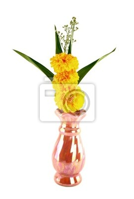 Wall mural Marigold and pandan in vase for worship on white background