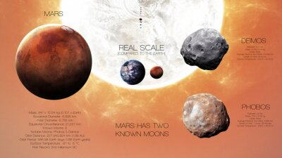 Wall mural Mars - High resolution infographics about solar system planet and its moons. All the planets available. This image elements furnished by NASA
