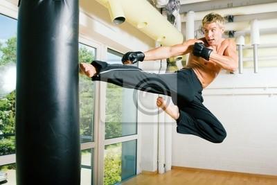 Martial Arts : Fly