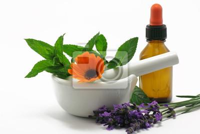 medicinal plants with mortar