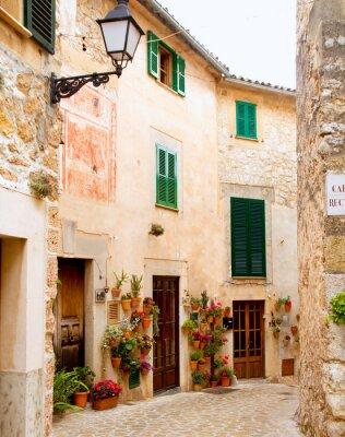 Wall mural Medieval Valldemosa traditional Majorca village