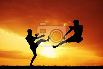 men doing karate at sunset