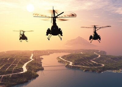 Wall mural Military helicopter
