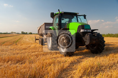 Wall mural Modern green tractor on agricultural field during harvest on sunny summer day