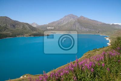 Moncenisio-Lago alpino