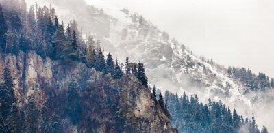 Wall mural mountain