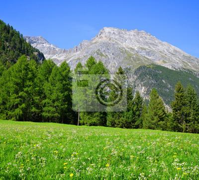 Mountain landscape. Piz Ela in Switzerland Alps - Canton Graubunden.