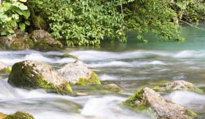 Wall mural Mountain river in Abkhazia, landscape. Clean the river flows in the mountains of Abkhazia.