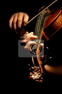 Wall mural musician playing violin isolated on black