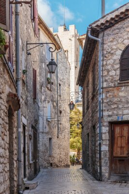 Wall mural Narrow cobbled street in the old village Vence , France.
