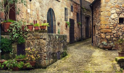 Wall mural Narrow street of medieval ancient tuff city Sorano with green plants and cobblestone, travel Italy background