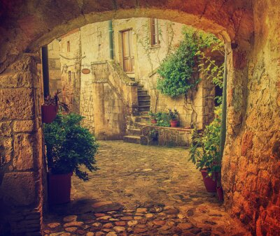 Wall mural Narrow street of medieval tuff city Sorano with arch, green plants and cobblestone, travel Italy vintage  background