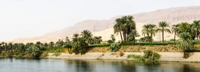 Wall mural Nile shore in nature