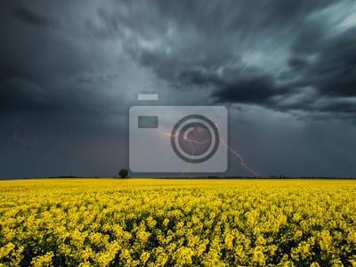 Nocna burza nad polem
