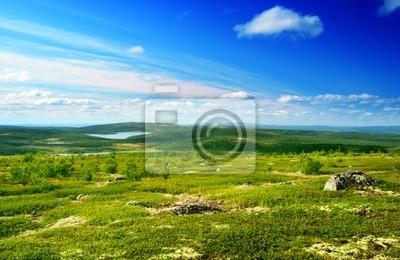 north mountain tundra