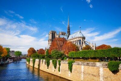 Wall mural Notre Dame de Paris along the Seine river
