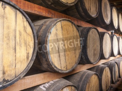 Wall mural Oak barrels piled for storing alcoholic beverages such as wine, whisky, rum, and etc.