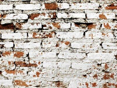 Wall mural Old brick wall