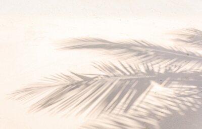 Wall mural ombre de palmes sur plage de sable doré