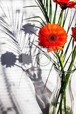 Wall mural Orange flower