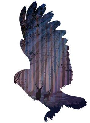 Wall mural owl