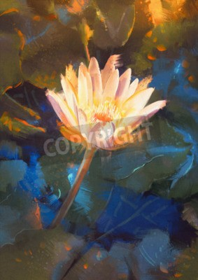 Wall mural painting of beatiful yellow lotus blossom,single waterlily flower blooming on pond