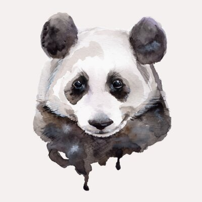 Wall mural Panda.Watercolor illustration Vector