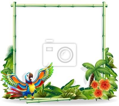 Pappagallo Ara Macaw Parrot sfondo - Bambu Bamboo Background