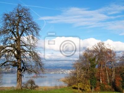 pastorale suisse