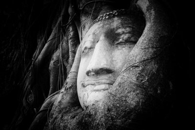 Wall mural Peaceful and tranquil face of Buddha carved on ancient stone