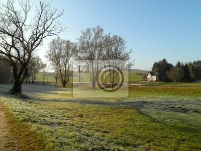 Peaceful Farmland in Germany