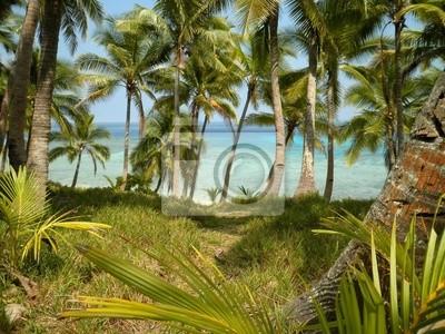 Perfect Beach View