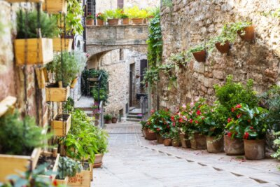 Wall mural Photography with Orton effect of a street decorated with plants and flowers in the historic Italian city of Spello (Umbria, Italy)