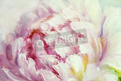 Wall mural Pink and white peony background. Oil painting floral texture