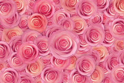 Wall mural  pink roses flower background, happy valentine day
