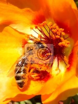 Wall mural pollen