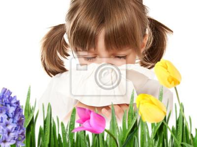 pollen allergy - hay fever