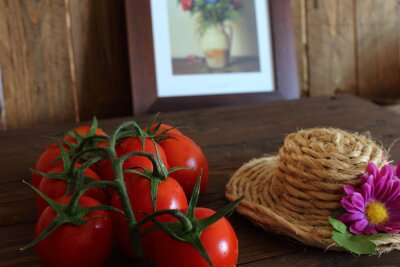 Wall mural Pomodoro rosso a grappolo varietà Piccadilly