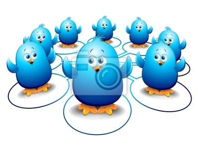 Pulcini Uccelli Blu Social Network-Blue Birds Social Media