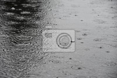 rain on a street  - background